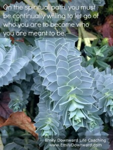 On the spiritual path, you must be continually willing to let go of who you are to become who you are meant to be.